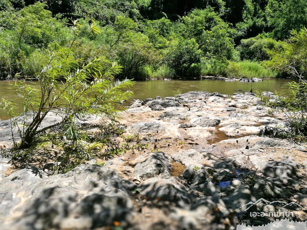 ต้นแม่น้ำเพชรบุรี หน้าเต้นท์ โป่งลึก อช แก่งกระจาน เพชรบุรี